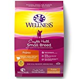 wellness puppy food